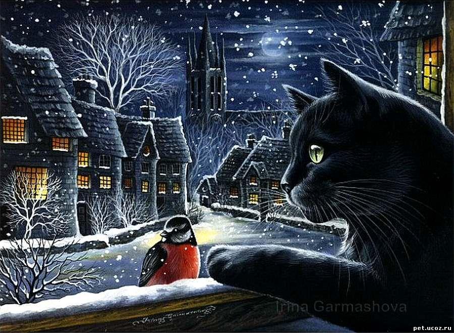 Кот и снегирь